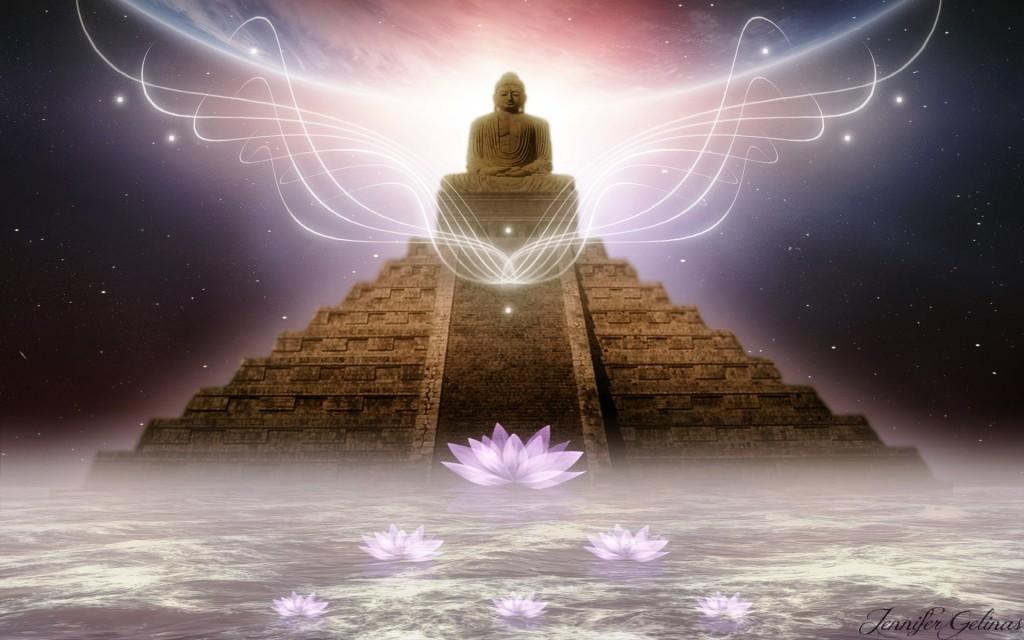 light-of-wisdom-325111